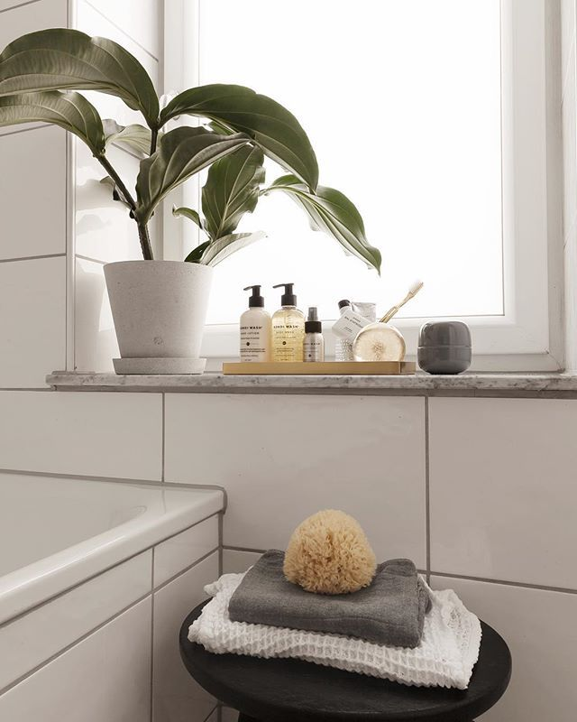 Bathroom Window After A Good Cleaning Session This Clean Feeling Will Last Exactly Two Hours Bathroom Window Sill Ideas Window Sill Decor Bathroom Window Decor