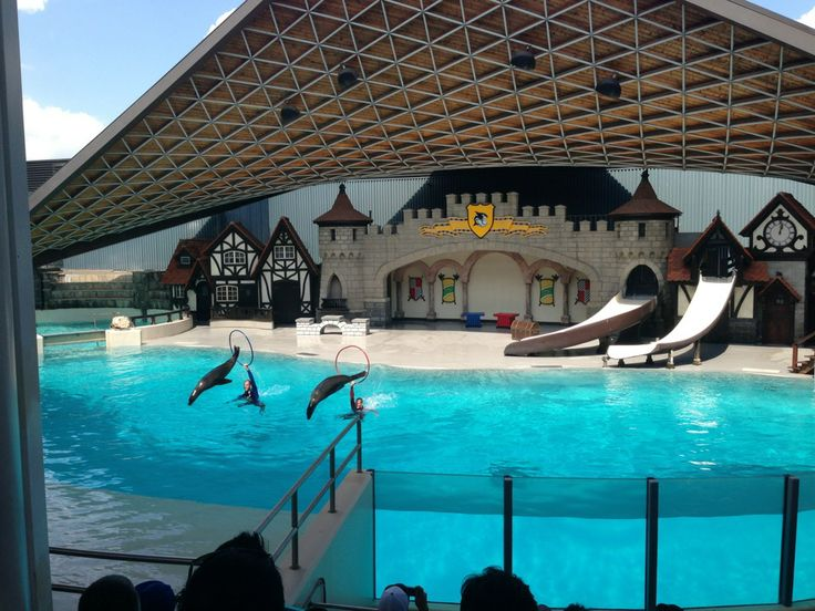 Marineland | Niagara Falls, ON | Went there as a kid with my family and just drove by on my trip with my husband.
