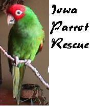 Iowa Parrot Rescue