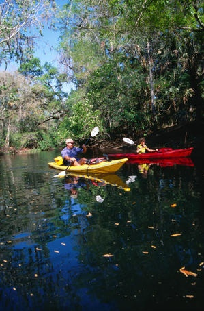 Kayaking on the Hillsborough River - Tampa, Florida