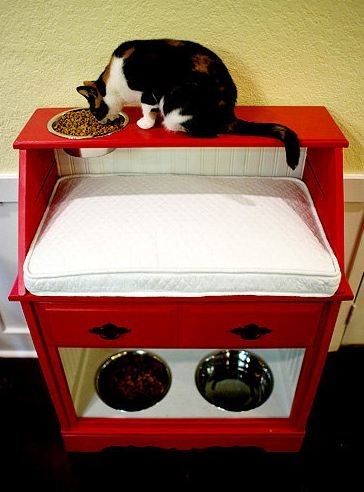 DIY Pet Station for both a cat and a dog... Just what I need to keep my dogs out of the cat food.