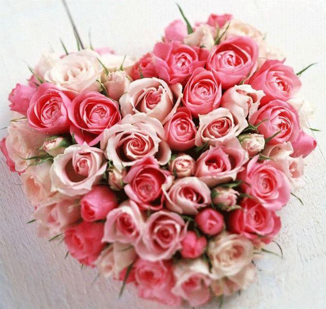 121 best Valentine\'s Day 2015 Images images on Pinterest ...
