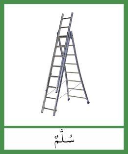 La nomenclature de la série verte Montessori en Arabe.    Documents Montessori Arabe