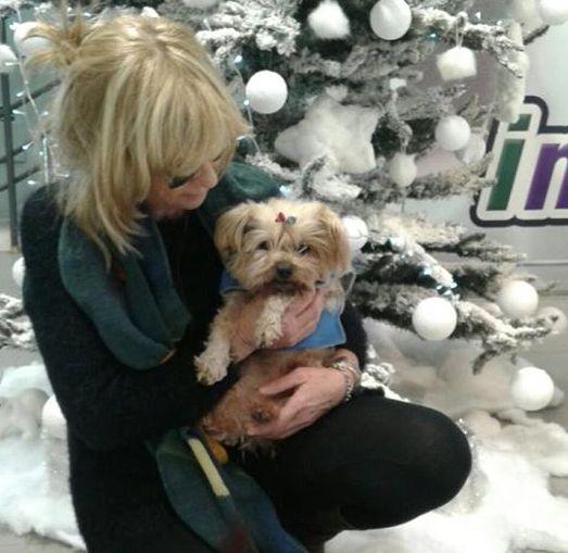 Niente ossigeno per il cane: così la vita di Elvis resta appesa alla burocrazia :http://www.qualazampa.news/2017/02/09/niente-ossigeno-per-il-cane-cosi-la-vita-di-elvis-resta-appesa-alla-burocrazia/