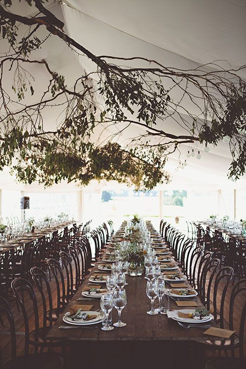 Consider building your wedding tent around a tree for an organic feel   Brides.com