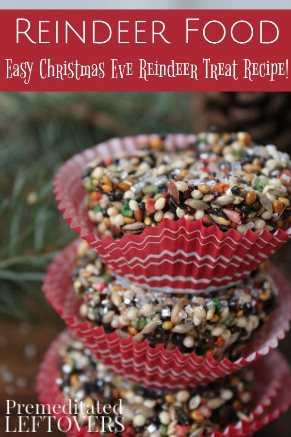 Make this Easy Reindeer Food Recipe with your kids to put outside on Christmas eve. It is a safe treat for squirrels and birds to nibble on as well and a fun idea for keeping kids busy while waiting for Santa.