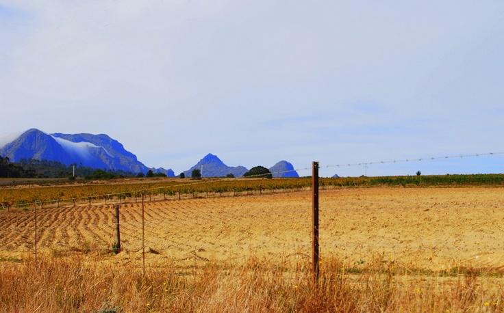 Horse Shoe, Wellington SA