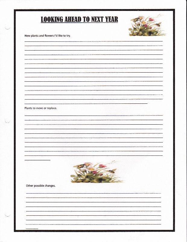 42 best Paper organization images on Pinterest Paper - credit memo form