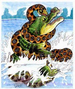 1645 Best Images About Crocodiles Amp Gators On Pinterest