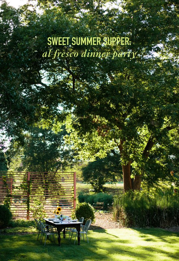 Sweet Summer Supper: Al Fresco Dinner Party // Photo credit This Wild Season // Twin Stripe Blog