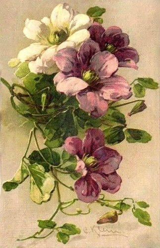 Another incredible postcard painting by C. Klein...her specialty were roses