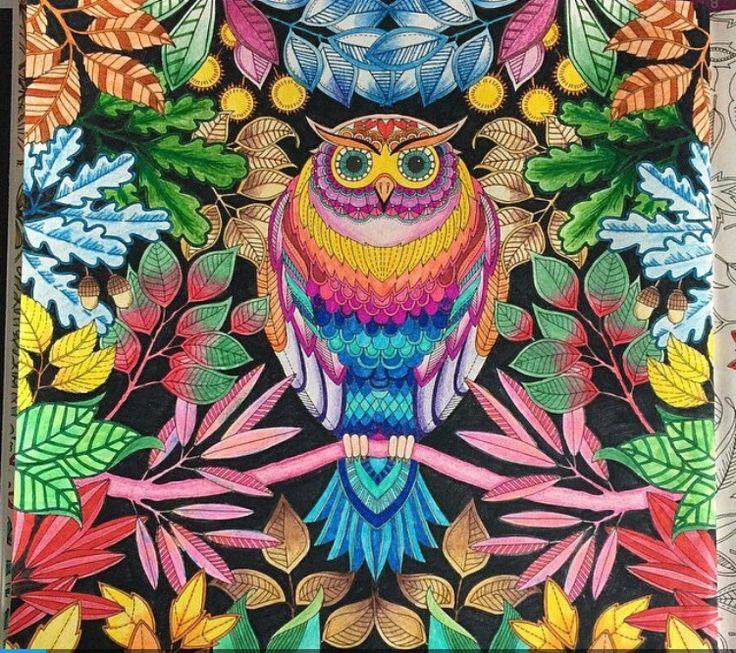 Owl secret garden coruja jardim secreto johanna basford for El jardin secreto johanna basford
