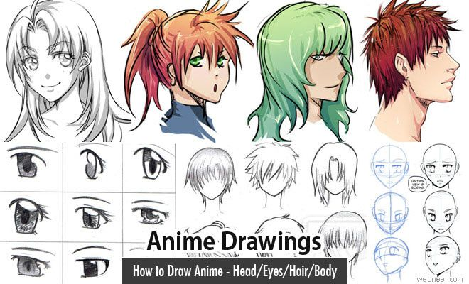 Anime Characters 155 Cm : Best images about human figure drawing on pinterest