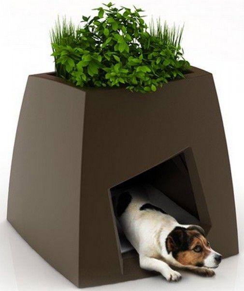 Casas para mascotas que decoran tu hogar