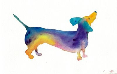 Cute watercolor painting of a dachshund!