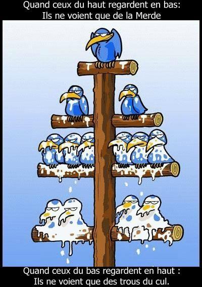 La vision de la hiérarchie