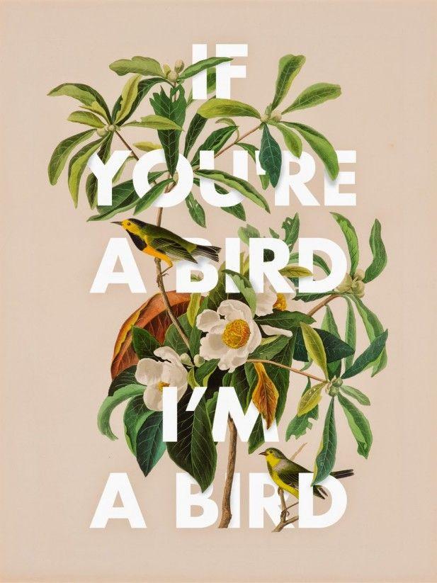 If you're a bird, I'm a bird (Via blu27)