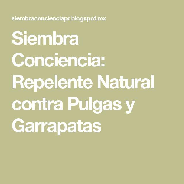 Siembra Conciencia: Repelente Natural contra Pulgas y Garrapatas