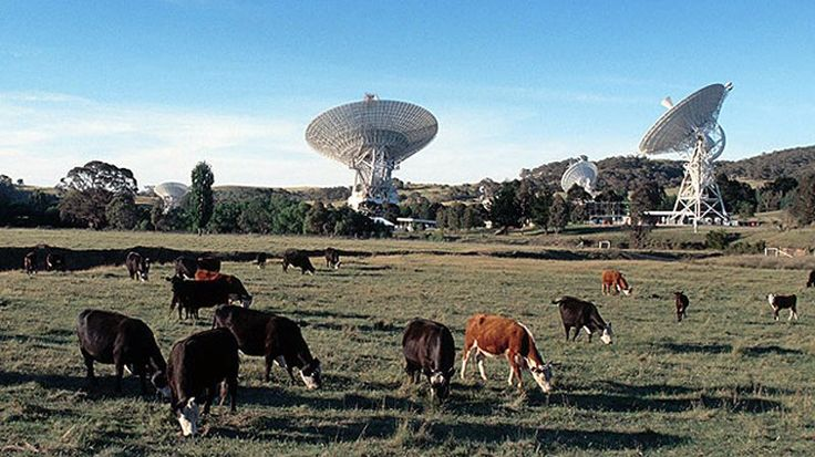To Find Alien Life, Expect the Unexpected | Daily Planet | Air & Space Magazine