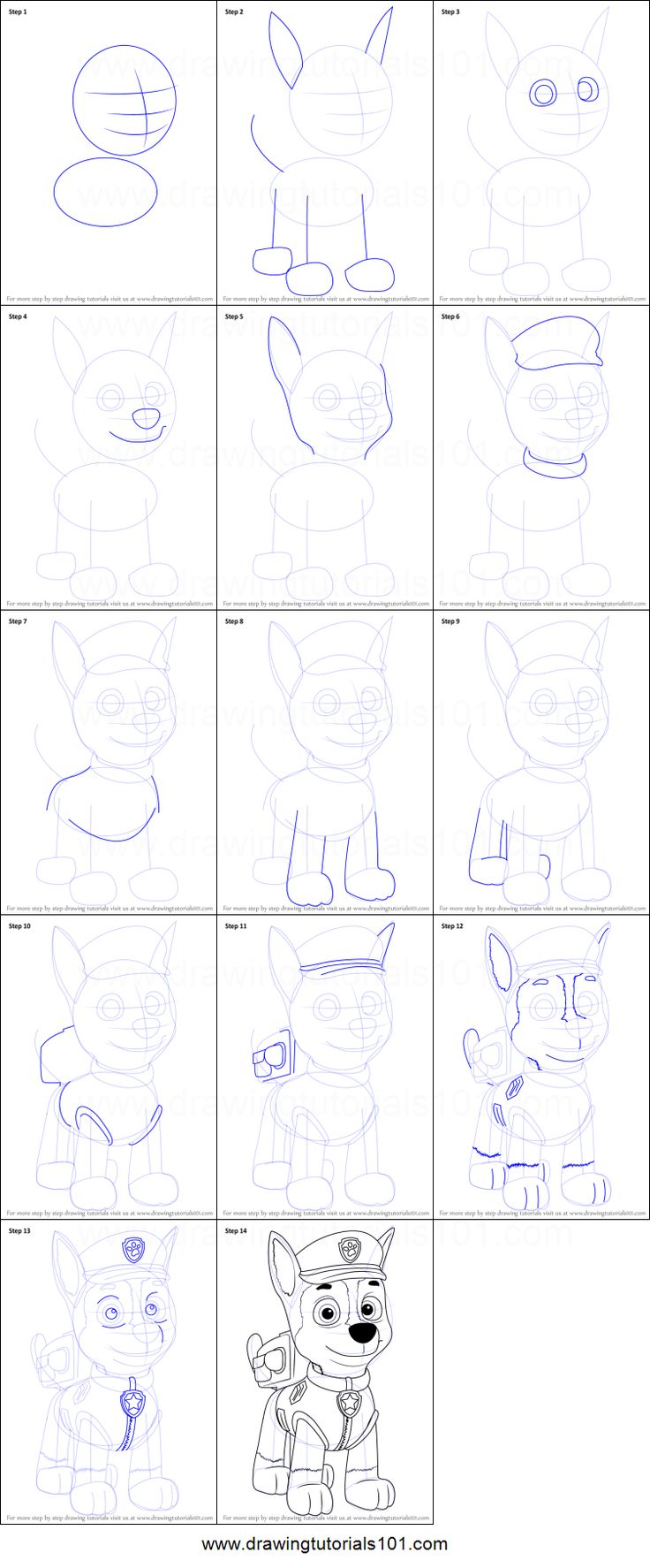 how to draw paw patrol logo step by step