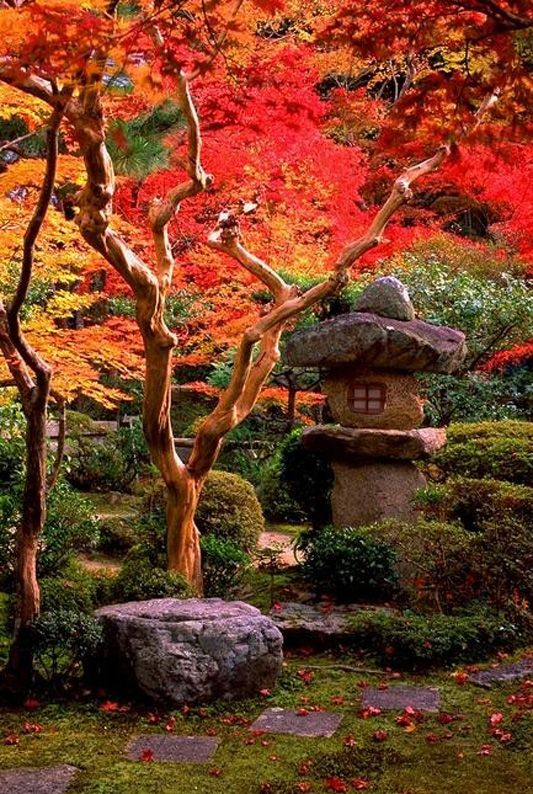 the serenity of a japanese garden.                                                                                                                                                     More