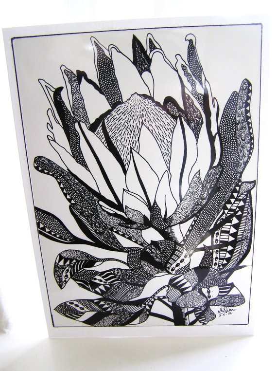 Hand drawn Protea design notelet/gift card with plain white envelope.. $6.00, via Etsy.
