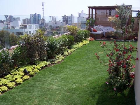 La Libélula jardines en azoteas