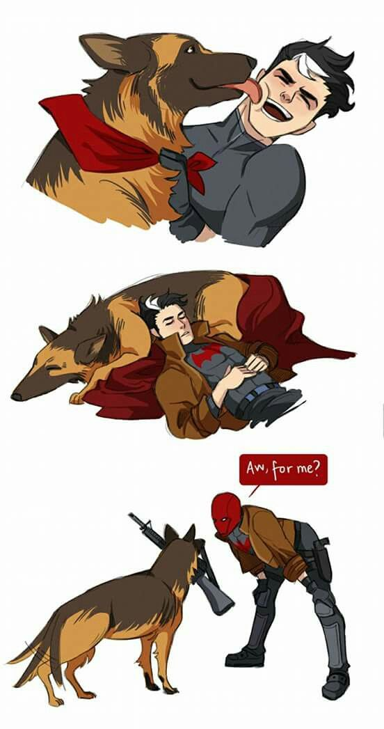 Jason Todd. Red Hood. Lol normal dogs fetch us balls or sticks. Jason's fetches guns.