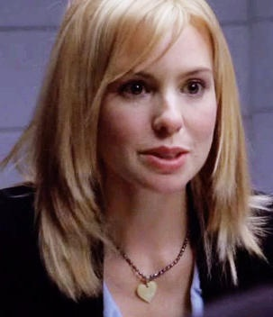 Nicole Wallace in Law and Order - Criminal Intent, I enjoy the way Goren interrogates his chameleonlike nemesis whenever she is a suspect and how she responds 2 him.