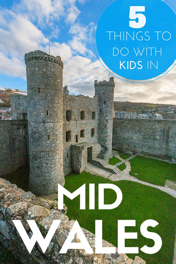 5 Things To Do With Kids In Mid Wales. Including where to stay. TRAVEL WITH BENDER | Family Travel made easy in Wales.