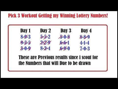 What were the winning lottery numbers