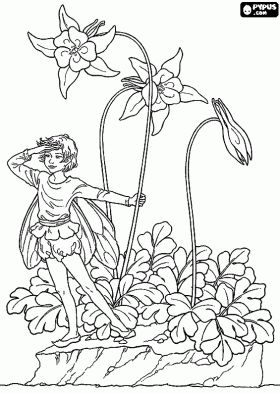 91 best images about coloring pages fairies on pinterest flower fairies coloring and print. Black Bedroom Furniture Sets. Home Design Ideas