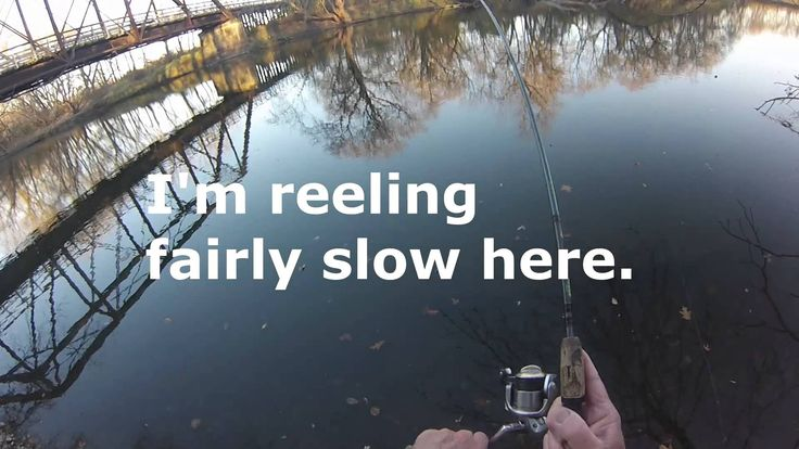 Go Pro River Smallies Smallmouth Bass Fishing Video on  Species  by Will...