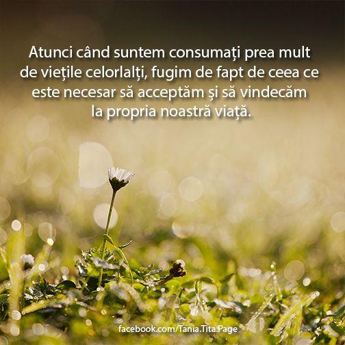 Atunci când suntem consumați prea mult de viețile celorlalți, fugim de fapt de ceea ce este necesar să acceptăm și să vindecăm la propria noastră viață. http://on.fb.me/YkhCK5