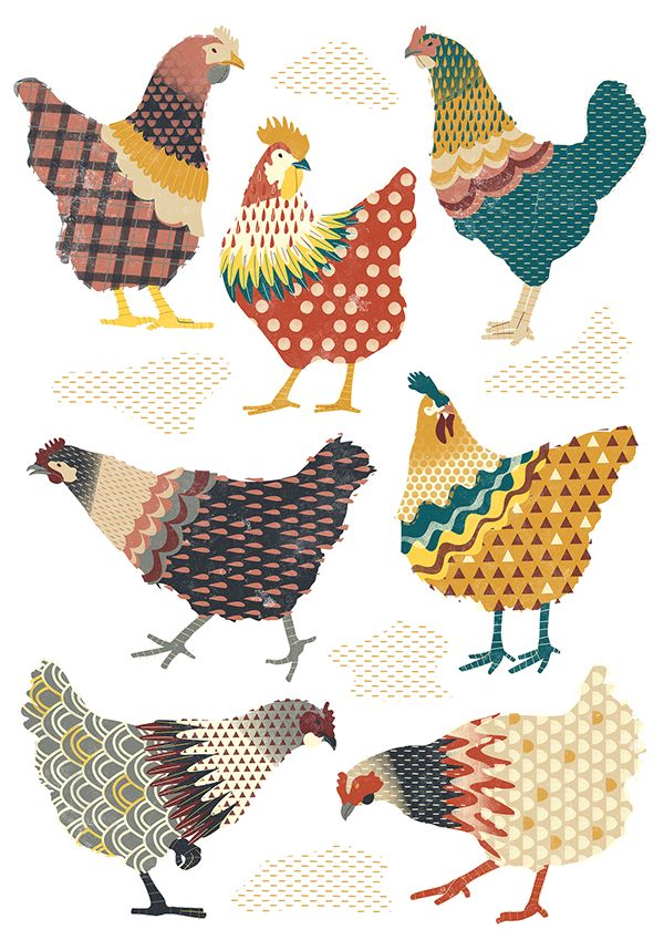 Seven Chickens on Behance