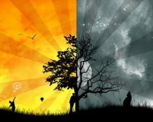 Confluente Literare : Orizontul Dual al Realităţii