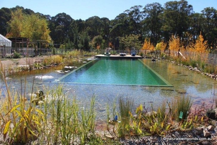 Best 297 ponds and pools images on pinterest other for Piscina filtro natural