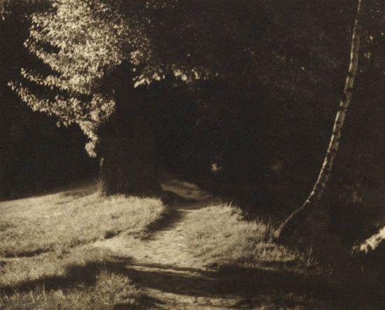 Josef Sudek path in the woods