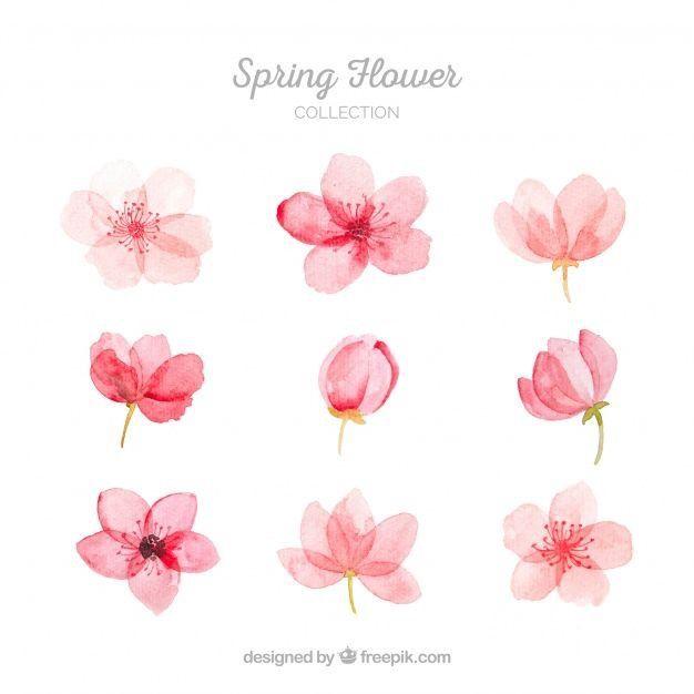 Pin By 小松板元气 On 背景写实 Watercolor Flowers Flower Art