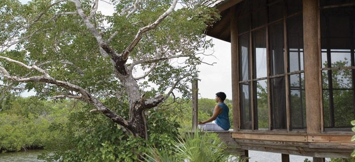 Devotees of intimate Caribbean retreats should seriously consider the seductively beautiful Parrot Cay. With a low-key ambience and Zen-like tranquillity it is an absolute delight on a private island bordered by pure, white-sand beaches and crystal-clear turquoise water.  http://www.abercrombiekent.co.uk/turksandcs/parrot-cay-and-como-shambhala-retreat.cfm