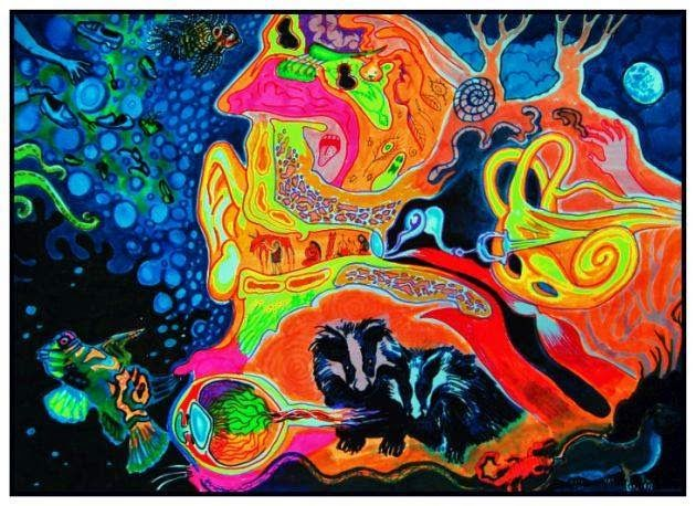 """"""" senses """" - markers on paper"""