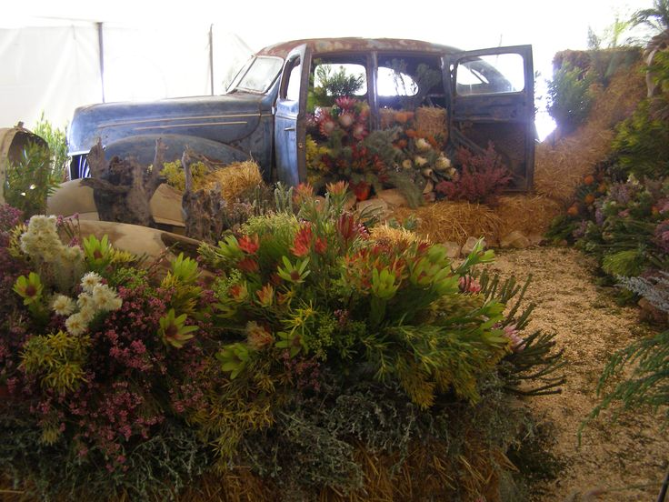 Flower show in Caledon