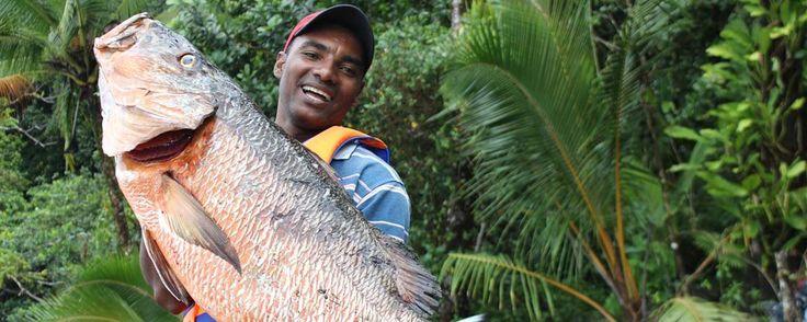 Sport Fishing PiedraPiedra Lodge - Nuqui Colombia