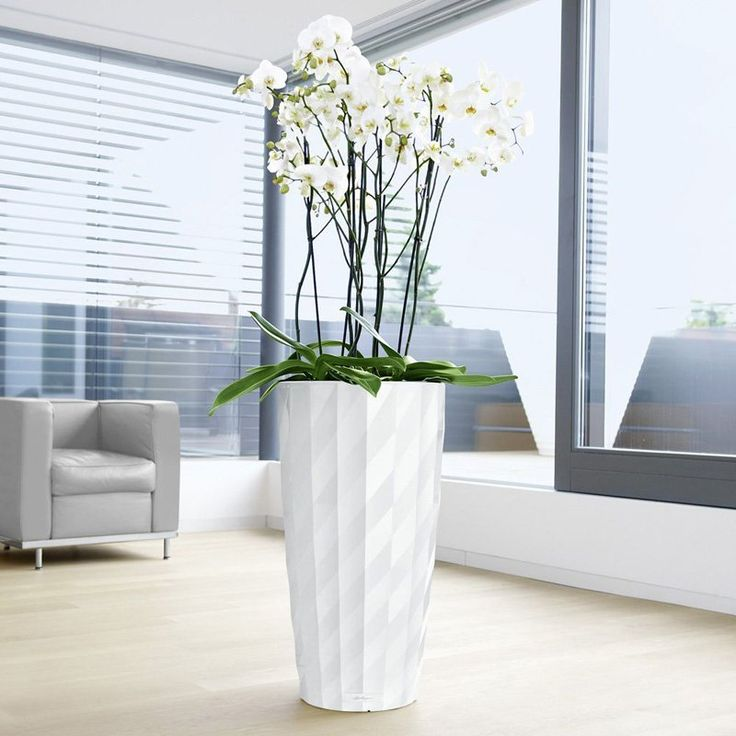 round lechuza diamante self watering indoor planter 20499 tall indoor plantsindoor