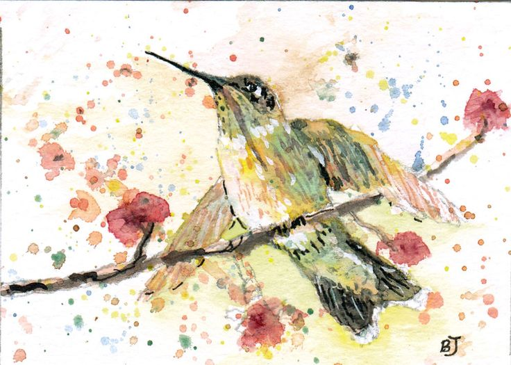 ACEO Original Hummingbird Miniature Watercolor Painting by Barry Jones #Miniature