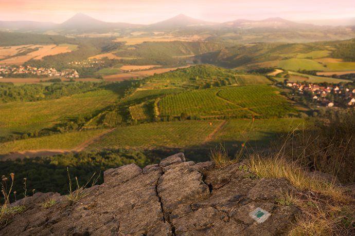 Žernosecké vinařství - prohlídka dobových sudů a ochutnávka vín