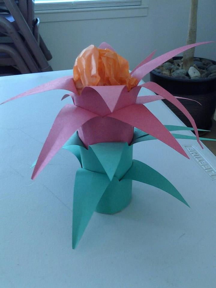 The Bromeliad Flower found in the Rainforest [used toilet paper roll, wrapped in 4 layers of construction paper precut like this: /\/\/\/\ (2 red, 2 green) Then peel back for points and stuff top with orange or yellow tissue paper]