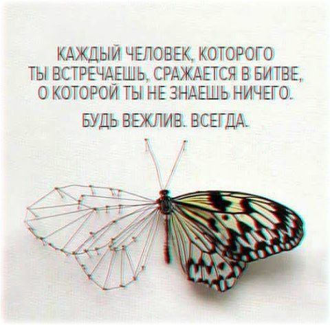 """Андрейка: «Делай со своей жизнью всё, что угодно. Напиши книгу, сделай тату, покрась волосы в сумасшедший цвет, признайся в любви уже наконец. Ведь когда-нибудь от тебя останется лишь тире между двумя датами, и никто не знает, когда же наступит это """"когда-нибу"""