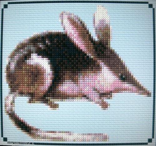 BILBY ~ Aussie Cross Stitch KIT #F717