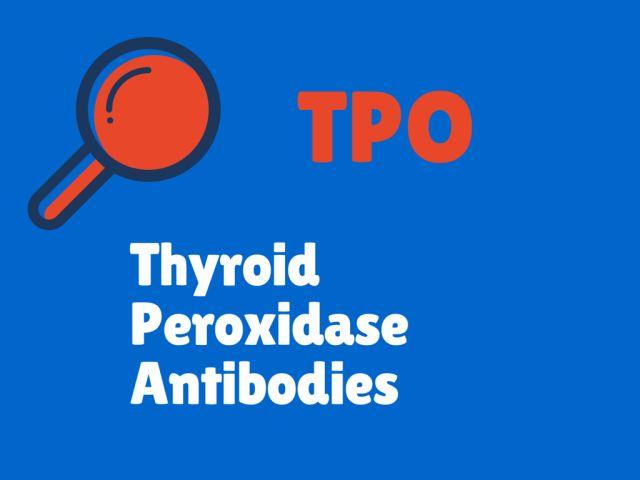 What Do Your Thyroid Blood Test Results Mean?: Thyroid Peroxidase Antibodies (TPO) / Antithyroid Peroxidase Antibodies